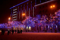 Christmas illumination color on the trees in the city Royalty Free Stock Photo