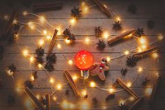 Christmas illuminations and cookie. Cinnamon with star anise around on wooden background. Image in old color style Royalty Free Stock Image
