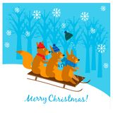 Christmas illustration with cute squirrels sledding down from a slope Stock Images
