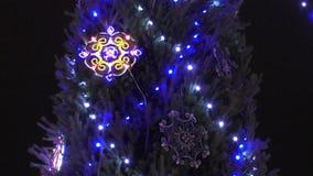 christmas images lights more my portfolio tree απόθεμα βίντεο