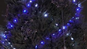christmas images lights more my portfolio tree φιλμ μικρού μήκους