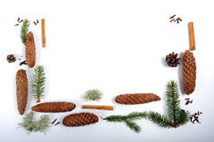 Christmas Ingredients. Spruce cones, twigs, pine cones, lichen and spices.  Cloves and cinnamon sticks. Christmas decor on white surface.  High angle shot. All Royalty Free Stock Photos