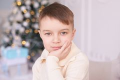 Christmas interior. Beautiful portrait. Little boy. Horizontally. Christmas interior. Beautiful portrait. Little cute boy. Horizontally. Light background Royalty Free Stock Photo