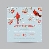 Christmas Invitation Card - Winter Birds and Berries Stock Photography