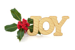 Christmas Joy. Christmas golden glitter joy sign with holly berry leaf sprig, isolated over white background Stock Photography