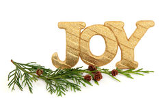 Christmas Joy. Sparkling gold glitter christmas joy sign with cedar cypress leaf sprigs and pine cone clusters over white background Royalty Free Stock Photos