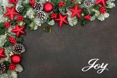 Christmas Joy for the Festive Season