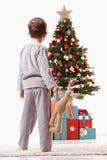 christmas kid little looking tree Royaltyfri Bild