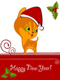 Christmas  kitten 3 Stock Images