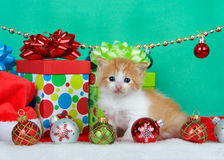 Christmas Kitten. Adorable orange and white long haired tabby kitten sitting next to christmas presents with holiday ornaments, green background with copy space Stock Photos