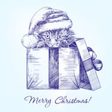 Christmas kitten in Santa stocking hat hand drawn. Vector realistic  sketch Royalty Free Stock Photo