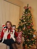 Christmas Kittens Stock Photo