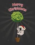 Christmas Koala HoldingThe Tree Stock Photo