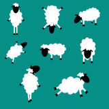 Christmas Lamb Royalty Free Stock Photo