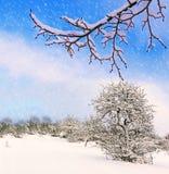 Christmas landscape background. Stock Images
