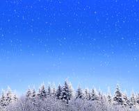 Christmas landscape background. Stock Photos