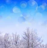 Christmas landscape background. Stock Photography