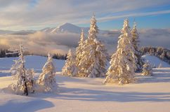 Christmas Landscape In The Mountains Stock Photos