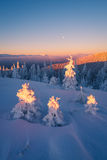 Christmas landscape in the mountains Stock Image