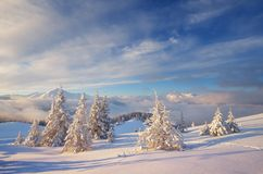 Christmas landscape in the mountains Royalty Free Stock Image