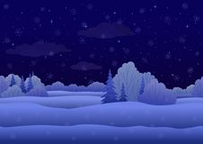 Christmas landscape, night winter forest Stock Photos