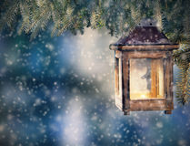 Christmas lantern hanging on fir branches Royalty Free Stock Image