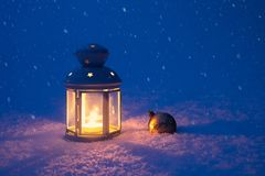 Christmas lantern and toy in the snow royalty free stock images