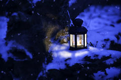 Christmas lantern in the winter forest Royalty Free Stock Images