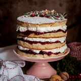 Christmas Layered Cake with Raspberry Jam and Whipped Cream Stock Images
