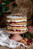 Christmas Layered Cake with Raspberry Jam and Whipped Cream Stock Photo