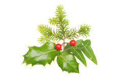 Christmas leaf motif Stock Photography