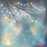 Christmas Light Bulbs on Xmas Night Background. Christmas Light Bulbs on Xmas Vector Night Background. Tree branches, glowing decorative garland, snowflakes Royalty Free Stock Photography