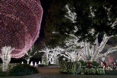 Christmas Light Display Stock Image