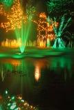 Christmas Light Display Royalty Free Stock Images