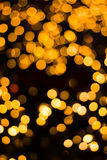 Christmas light orange on tree Royalty Free Stock Photography