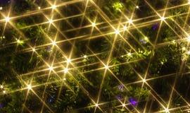 christmas light tree Στοκ εικόνα με δικαίωμα ελεύθερης χρήσης