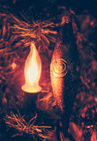Christmas light Royalty Free Stock Image