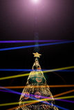Christmas light and xmas tree on black background Royalty Free Stock Photos