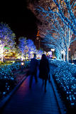 Christmas lighting landscaping Stock Image