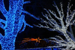 Christmas Lights. Blue Tree, White Tree and Comet star in the Garden Stock Photography