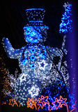 Christmas Lights. Christmas Tree, Blue Tree, Snowman and Comet star in the Garden Stock Image
