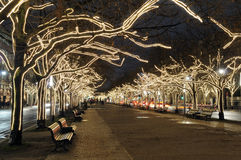 Christmas lights. In berlin at night Royalty Free Stock Photo