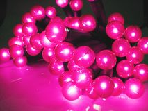 Christmas lights 4. Pink glowing Christmas lights. Other lights in soft focus in background royalty free stock photo
