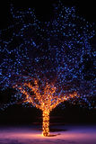 Christmas Lights. Along the Trail of Lights in the Denver Botanic Gardens at Chatfield Royalty Free Stock Photo