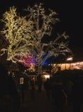 Christmas lights in Amusement Park Liseberg, Gothenbur, Sweden. Christmas lights in Park, Sweden. Xmas celebration concept royalty free stock images
