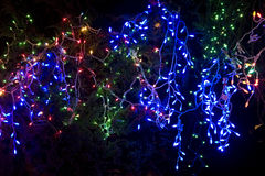 Christmas lights and decoration. A festival of lights and ornaments for Christmas Stock Photos