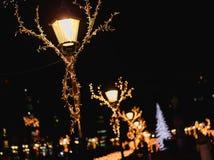 Christmas lights in Esplanade Park Stock Photos