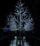 Christmas lights festival and celebration in Hudson Gardens royalty free stock images