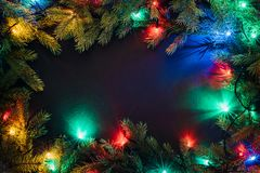 Christmas lights and fir branches on black background royalty free stock images