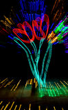 Christmas lights form colorful flowers Royalty Free Stock Photography